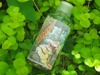 Florida Water 4oz-Metaphysical Cleansing and Protection